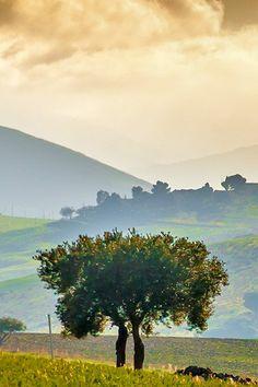Betoverend Sicilië