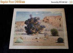 Summer Sun Sale RARE James Swinnerton  Desert Smoke Tree in