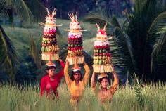 Trek Indonésie - Bali, la traversée - La Balaguère