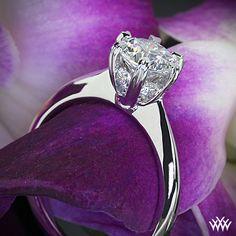 18k White Gold Ritani Setting Solitaire Ring.
