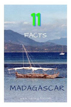 Facts about our experience Madagascar. #culture #sailing #islands #pirogue #people #facts Madagascar Culture, Fox Facts, People Facts, Africa Travel, Interesting Facts, Memoirs, South Africa, Den