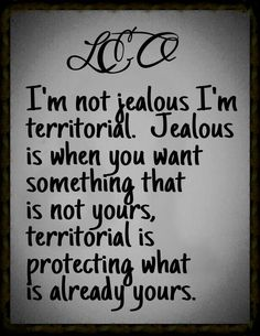 Yessssssssss! I am extremely territorial and protective....jealousy is for lil bitches