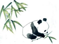 Giant Panda Drawing Pandas need to be protected