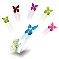 Check out http://flyingbutterfly.com! The Flying Butterfly catalog page offering all the different designs and colors available when purchasing a Flying Butterfly. Make your purchase by clicking on the Buy Now Paypal buttons using your a credit/debit card.