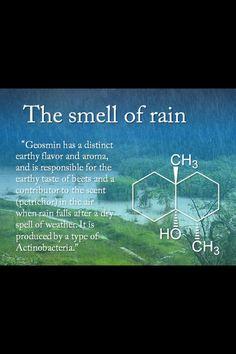 Rain chemistry.