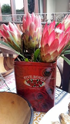 Proteas in a Vintage Tin South African Decor, South African Weddings, African Theme, African Christmas, South Afrika, Protea Flower, Christmas Decorations, Table Decorations, Photo Projects