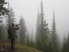 Foggy morning elk hunt. #Elk #Hunting....looking forward to some of these soon.