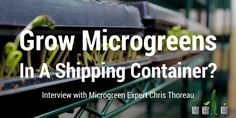 growing microgreens in a shipping container?
