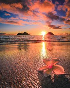 Beautiful Islands, Beautiful Sunset, Beautiful World, Beautiful Places, Beautiful Pictures, Dream Vacations, Vacation Trips, Landscape Photography, Nature Photography