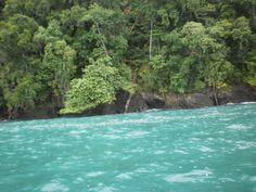 The water in Costa Rica. The Golfo Dulce is sooooo amazing!