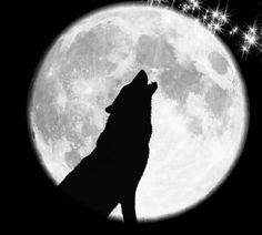 The Wolf is Negative Space.  The moon is where the TEXT will be.