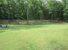 Back yard & woods, fire pit