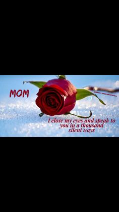 Happy birthday mom from daughter heavens 42 Ideas for 2020 Miss My Mom Quotes, Mom In Heaven Quotes, Mom I Miss You, I Love Mom, Dad Poems, Mother Poems, Mother Daughter Quotes, Grief Poems, Father Quotes
