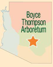 Boyce Thompson Arboretum - Superior, AZ  ... Dog friendly and fun trails