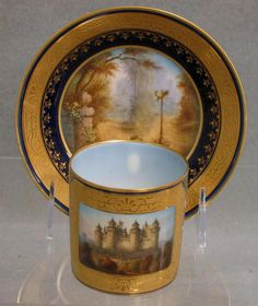 Sevres topographic decorated cup and saucer
