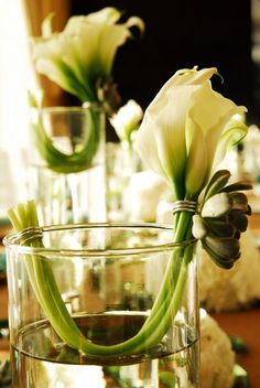 Really unusual table centre with calla lilies, succulents and tall glass vases. You could use something through the water to add interest lower down too or keep them clean and simple.
