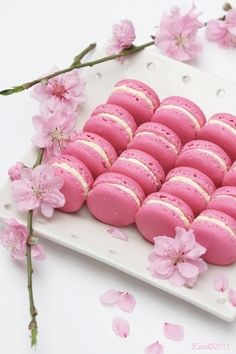 Macaroons This has no link on what these are other then Macaroons.I am thinking Cherry Blossom Macaroons Macarons Rosa, Pink Macaroons, French Macaroons, Pink Love, Pretty In Pink, Hot Pink, Buffet Dessert, Pink Foods, I Believe In Pink
