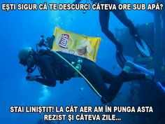 Asta e chips uri si aer Funny Images, Funny Pictures, Angel And Devil, Love Memes, Catio, Geek Stuff, Jokes, Lol, Humor
