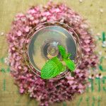 5 Essential Springtime Gin Cocktails