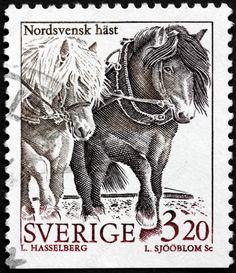 SUECIA - CIRCA 1994 Un Sello Impreso Por Suecia, Muestra La Imagen Del Norte De…