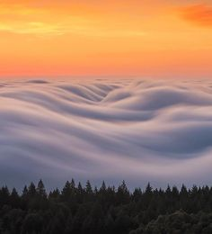 Nick Steinberg Captures Surreal and Breathtaking Landscapes of Fog Fog Photography, Landscape Photography Tips, Photography Hacks, Photography Awards, Underwater Photography, Photography Backdrops, Street Photography, Beautiful Sky, Beautiful World