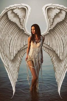 119 Best Angelic images in 2019 | Angel, Angel art, I