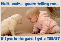 Dog and Baby Quotes   Cute Babies with Funny Captions