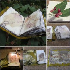 Terrie ~.~ smiling.....: Eco print ref book 植物印染參考