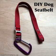 Things You Need      Dog Collar    Thread    Sewing needle    Carabiner     I used my other dog's old dog collar. You can use any Nylon collar. You can even go buy one at the 99 cent store if you don't have one on hand.    What I did is fold the end (big enough so you know it can fit your seat belt) and sew it. It was easy and simple. Requires a little strength from your thumb but it's manageable.     Other DIY's that I saw you're supposed to take the little buckle off but to be honest I…