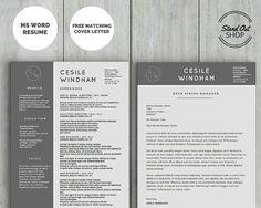 slate grey modern resume template