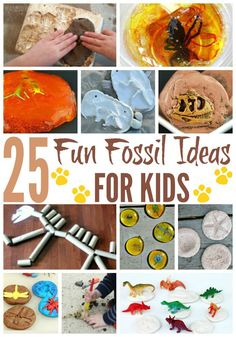How To Produce Elementary School Much More Enjoyment 25 Fun Fossil Ideas For Kids Dinosaur Activities, Dinosaur Crafts, Dinosaur Fossils, Unicorn Crafts, Science Activities, Activities For Kids, Dinosaur Projects, Science Resources, Science For Kids