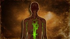 These 4 Warning Signs Indicate Your Body Is Filled With Toxins | RiseEarth