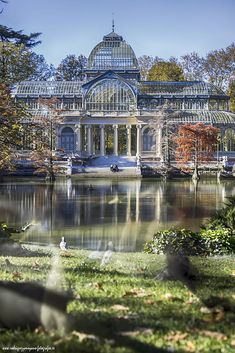 PALACIO DE CRISTAL by Luis Rguez on The Effective Pictures We Offer You About Greenhouse shed A quality picture can tell you many things. You can find the most beautiful pictures that can be pre Nature Architecture, Beautiful Architecture, Beautiful Buildings, Beautiful Places, Beautiful Pictures, Nature Aesthetic, Travel Aesthetic, Places To Travel, Places To See
