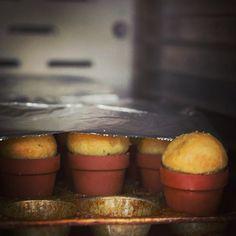 Focaccia bread pots
