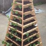 How To Build A Vertical Pyramid Planter