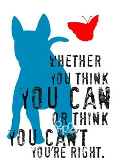 whether you think you can or think you can't you're right. (bull terrier)