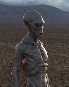 Types Of Aliens, Aliens And Ufos, Ancient Aliens, Alien Concept Art, Creature Concept Art, Creature Design, Star Fi, Alien Pictures, Alien Aesthetic