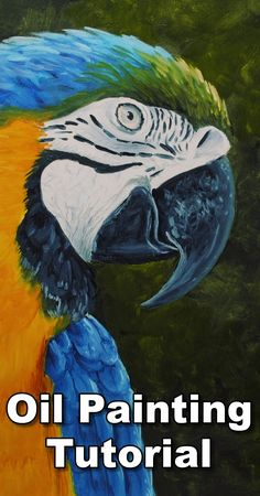 Learn how to paint a realistic Parrot in this free oil painting tutorial using water miscible oil paints