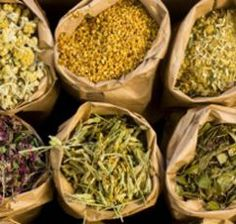 Six Herbal Teas With Healing Powers