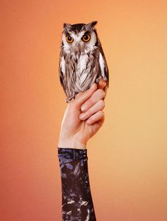 Edun Enlists Ryan McGinley for Its Fall 2012 Campaign Featuring Birds of Prey