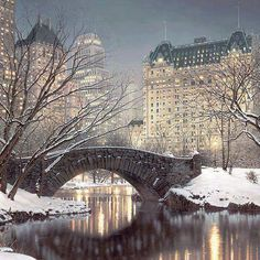 Central Park looks gorgeous in snow white