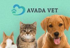 Propuesta de Página Web para Clínica Veterinaria Diseño Web Responsive | Optimizado para Móviles y Tabletas | Conexión a Redes Sociales | Optimizado para SEO | Muti-Idioma | Analítica Web | Personalización |  Escalabilidad | Seguridad Web Responsive, Emergency Care, Veterinary Care, Pet Grooming, Pet Care, Your Pet, Funny, Pets, Madrid