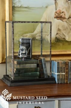 Repro antique glass display case via Miss Mustard Seed (decorsteals)