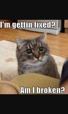 Ummmm...Yeah. Your broken