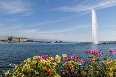Ausflugsziele Schweiz: 99 Ideen für einen tollen Tagesausflug Weekender, Places In Switzerland, Swan Lake, Narnia, San Francisco Skyline, Travel Photography, Europe, Nature, Watercolor Water