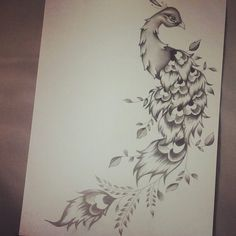 peacock and flower drawing tattoo - Google Search