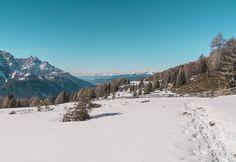 Ah i programmi Autodesk. Quanto love.   Malga Klammbach Passo Monte Croce Comelico. Sesto.