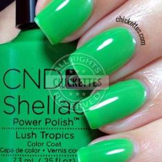 I'm trying to branch out a little into different brands, and this new collection by CND Shellac really caught my eye. I love bright, bold colors and these definitely fit that bill! Long Square Acrylic Nails, Colored Acrylic Nails, Acrylic Nail Powder, Coral Nails With Design, Green Nail Designs, Shellac Nail Colors, Shellac Nails, Cnd Colours, Nail Polishes