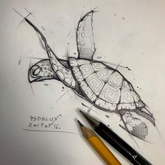 Psdelux is a pencil sketch artist based in Tatabánya, Hungary. He usually draws animal sketches. Psdelux also makes digital drawings. Cool Art Drawings, Pencil Art Drawings, Art Drawings Sketches, Fish Drawings, Cool Sketches, Sketch Drawing, Drawing Ideas, Animal Sketches, Animal Drawings