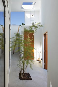 Inside Out By: Takeshi Hosaka Architects